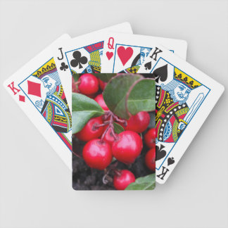 Red berries on a teaberry bush Gaultheria procumbe Bicycle Playing Cards