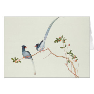 Red-billed blue magpies,a branch red berries cards