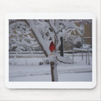 Red Bird (winter storm) Mouse Pad