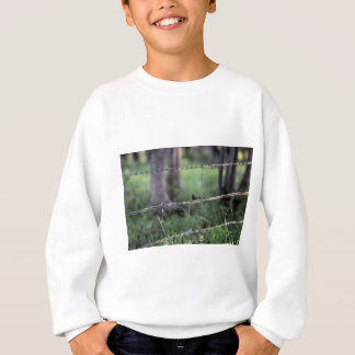 RED & BLACK WREN AUSTRALIA ART EFFECTS SWEATSHIRT