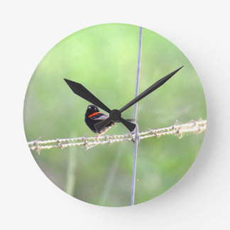 RED & BLACK WREN QUEENSLAND AUSTRALIA WALL CLOCK