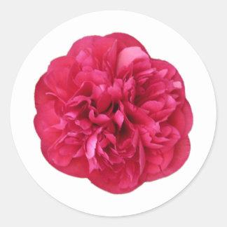 Red Bloom Round Sticker
