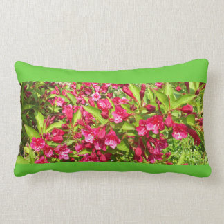 red blooms throw pillows