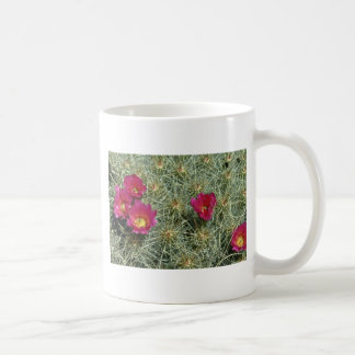 Red Blooms On Cactus flowers Mugs