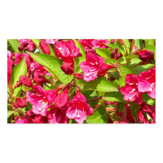 red blooms pack of standard business cards