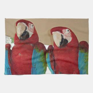 Red, Blue, Green Macaws (Parrots) Tea Towel