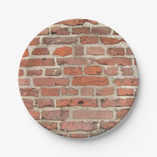 Red Brick Wall Structure 7 Inch Paper Plate