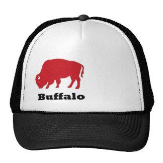 red buffalo cap