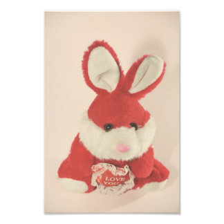 Red bunny toy photograph