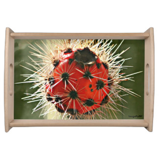 Red Cactus Bulb Serving Tray