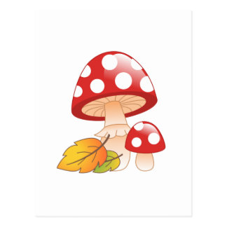 Red Cap Toadstool Mushrooms and Leaves Postcard
