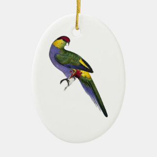Red Capped Parakeet Bird Parrot Ceramic Oval Decoration
