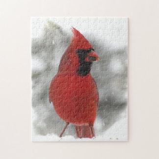 Red Cardinal Bird Animal Puzzle