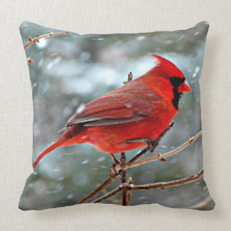 Red Cardinal bird, cold winter day Cushion