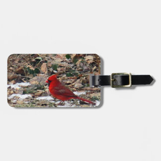Red Cardinal Bird in Leaves Luggage Tag