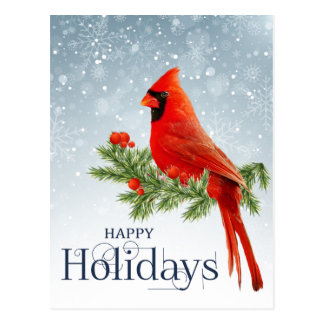 Red cardinal happy holidays postcard