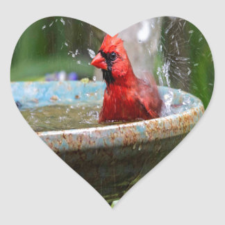 red cardinal heart sticker
