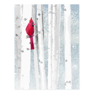 Red Cardinal in beautiful snowy Birch Tree Forest Postcard
