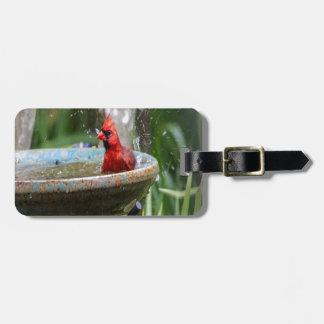 red cardinal luggage tag