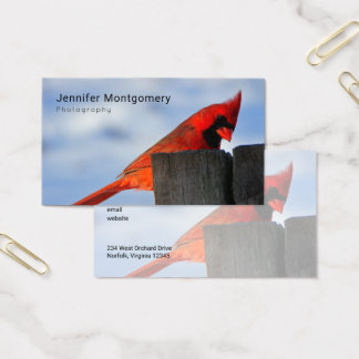Red Cardinal on Wooden Stump Business Card