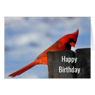 Red Cardinal on Wooden Stump Happy Birthday Card