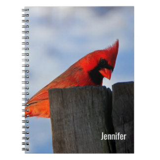 Red Cardinal on Wooden Stump Personalized Notebook