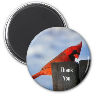 Red Cardinal on Wooden Stump Thank You Magnet