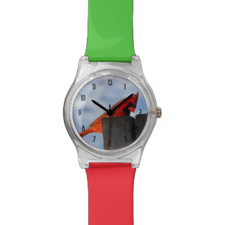 Red Cardinal on Wooden Stump Wristwatch