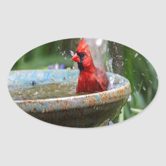 red cardinal oval sticker