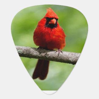 red cardinal plectrum