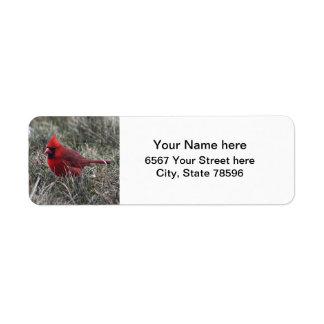 Red Cardinal Return Address Labels