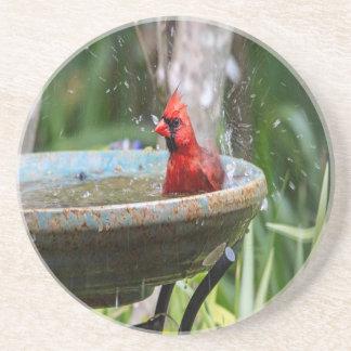red cardinal sandstone coaster