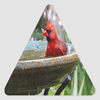 red cardinal triangle sticker