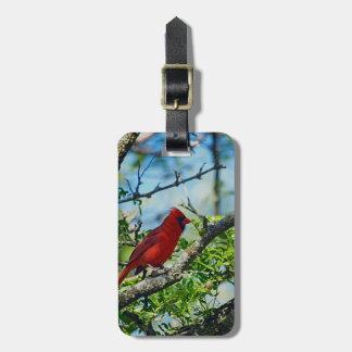 Red Cardinal  Wild Bird Photograph Luggage Tag
