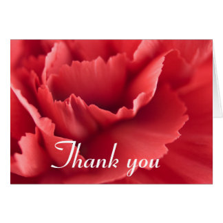 Red carnation flower Thank you card