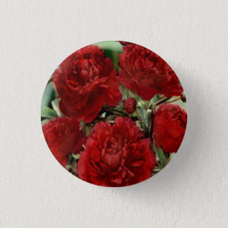 Red Carnation Flowers Button