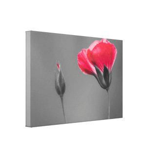 Red Carnation Flowers Grey Modern Wall Art