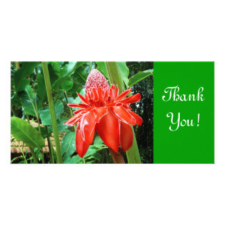 Red Carribean Rose Exotic Flower Personalized Photo Card