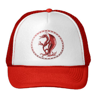 Red Celtic Dragon Hat