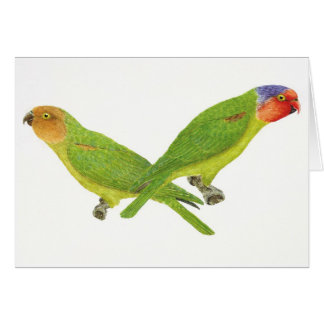 Red-Cheeked Parrot Pair Greeting Card