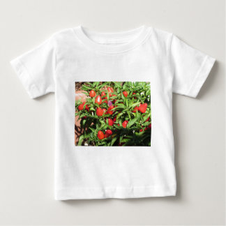 Red chili peppers hanging on the plant baby T-Shirt