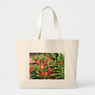 Red chili peppers hanging on the plant large tote bag