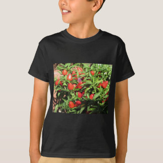 Red chili peppers hanging on the plant T-Shirt