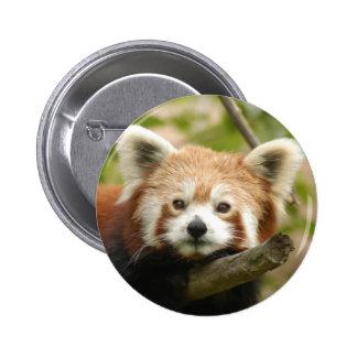 red-chinese-panda10x10 6 cm round badge