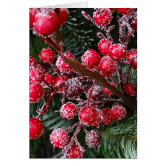 Red Christmas Berries. Greeting Card