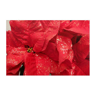 Red Christmas Flower With Golden Powder Acrylic Print