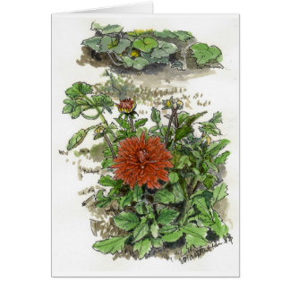 Red chrysanthemum card