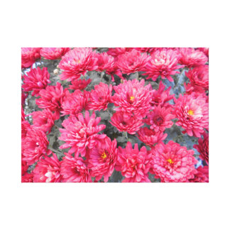 Red Chrysanthemum Flowers Canvas Print
