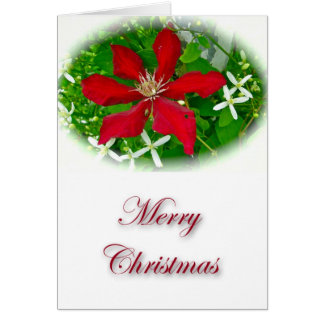 Red Clematis Merry Christmas Card