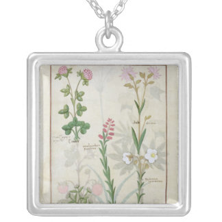 Red clover & Aube Bellidis Onobrychis & Hyssopus Personalized Necklace
